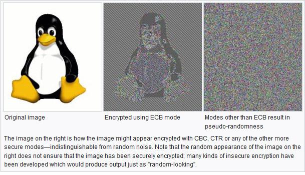 ECB_Penguin